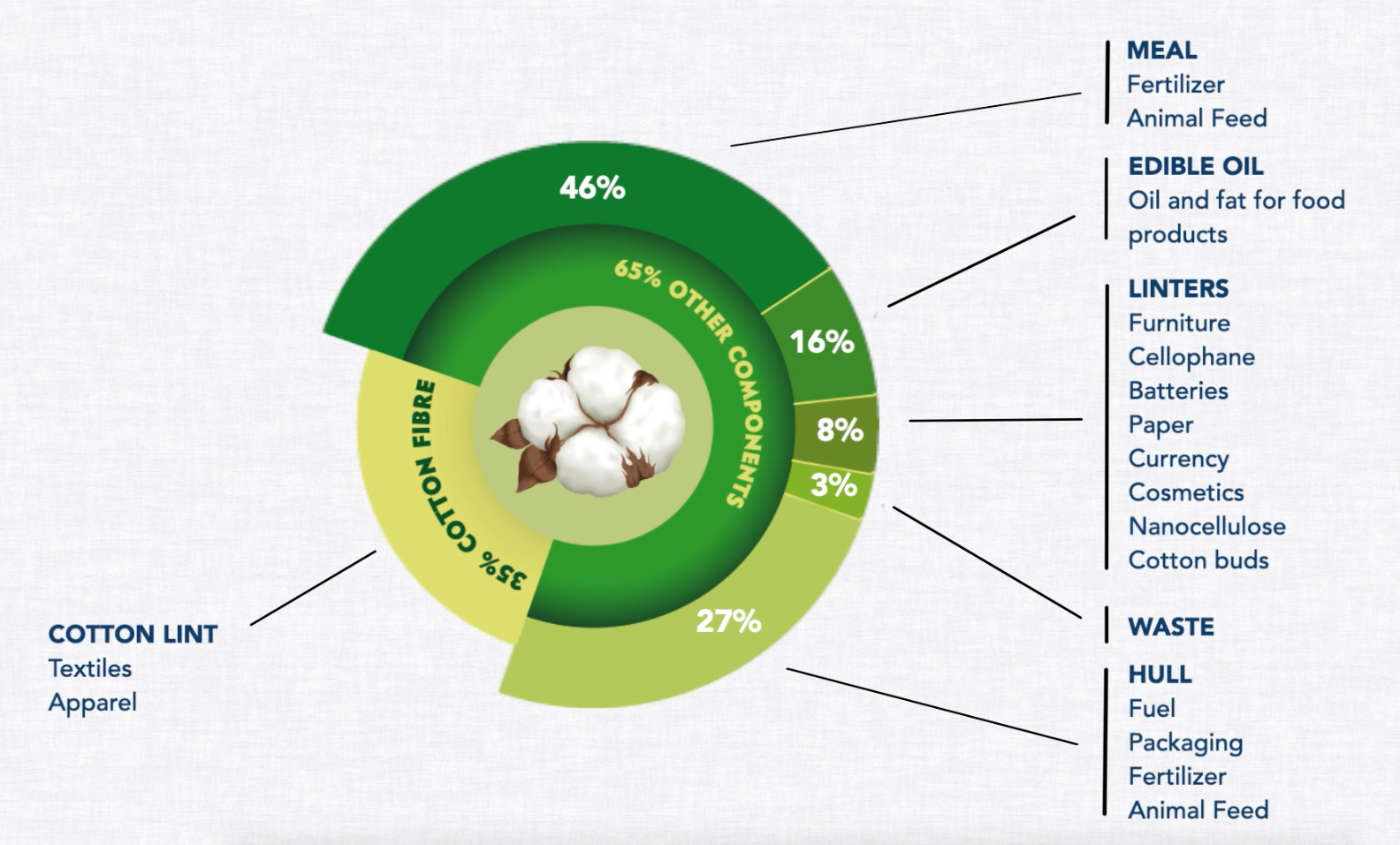 Most people only think of the fibre when they think of cotton, but 100% of the cotton plant has practical uses that improve our lives and generate additional revenue for growers.