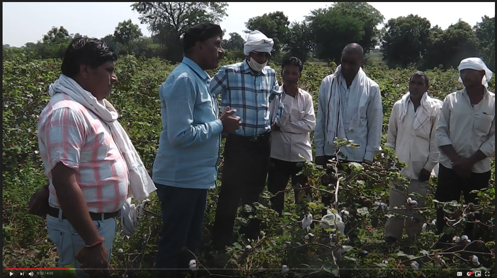 Training on a field visit to a cotton farm