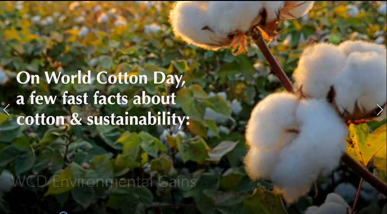 Cotton Sustainability Facts